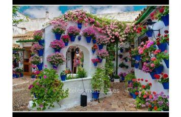 Apartamento Villa Aries