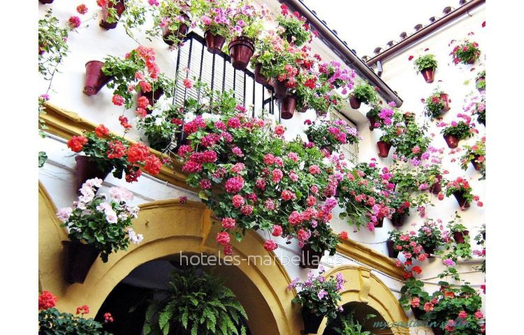 Casa en Marbella 1