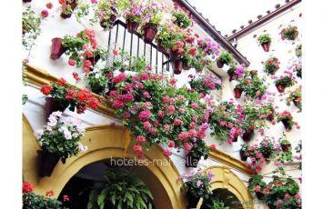 Villa Casa en Marbella