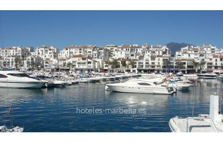 Diver Marbella 22