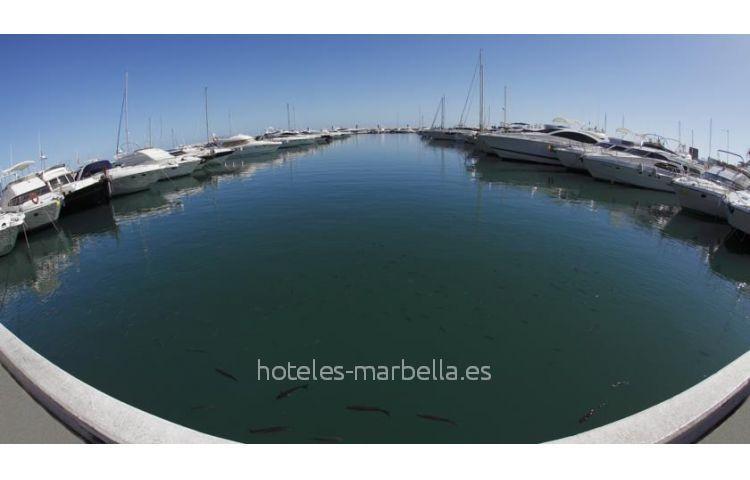 Pyr Marbella 19